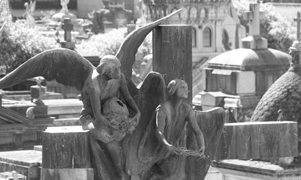 Cementerios: flor & piedra
